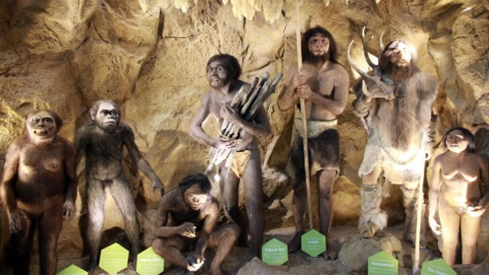 museo de ciencia filipinas hominidos