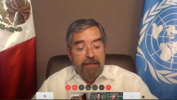 Juan Ramón de la Fuente Senado