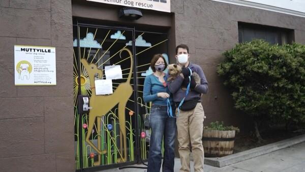 La adopción de mascotas en EU se dispara en medio de la pandemia