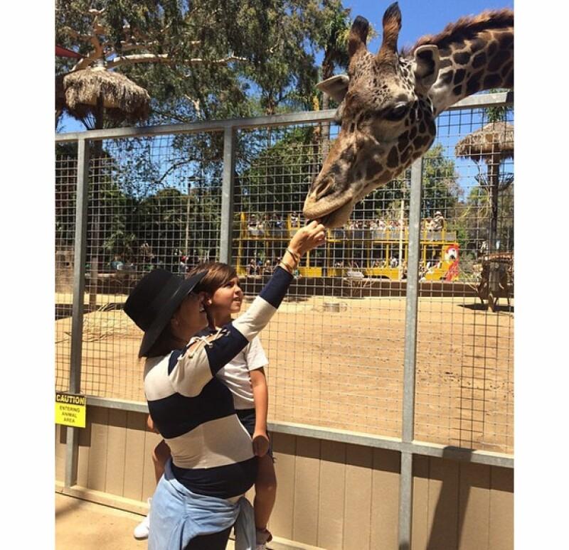 La mayor de las hermanas Kardashian está a la mitad de su tercer embarazo, y este fin de semana lo presumió junto a su hijo mayor en un safari de San Diego.