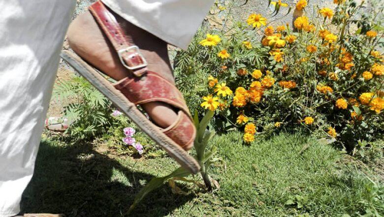 Los niños amuzgos provenientes de Guerrero, se enfocaron en sus costumbres y tradiciones.