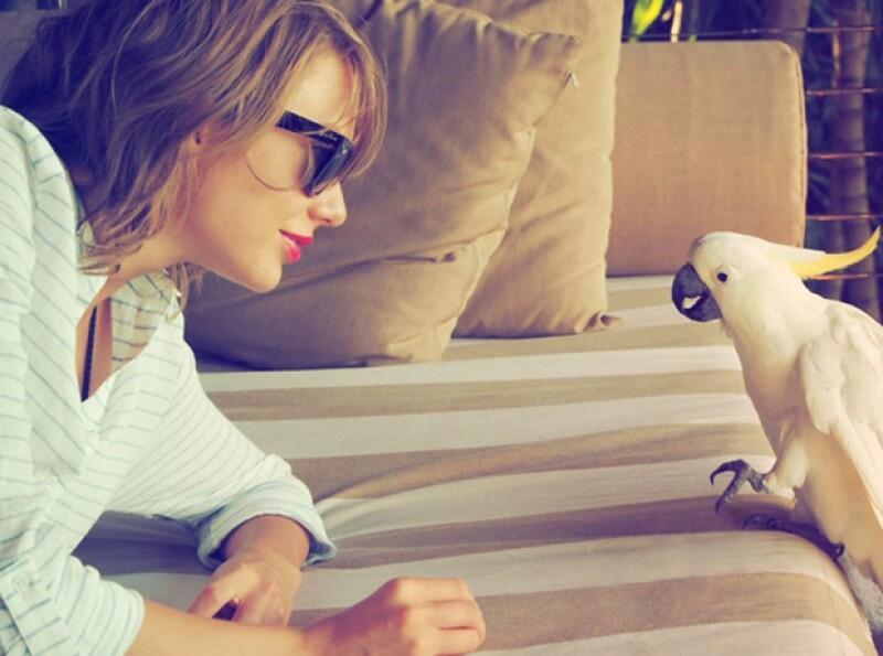 Taylor compartió una imagen de sus vacaciones en Australia, en donde se le acercó una cacatúa.