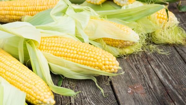 Más maíz.