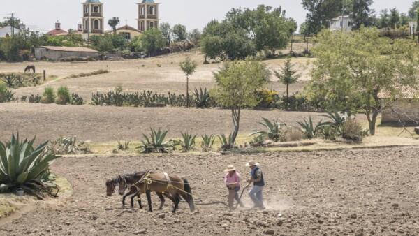 Pequeños productores rurales