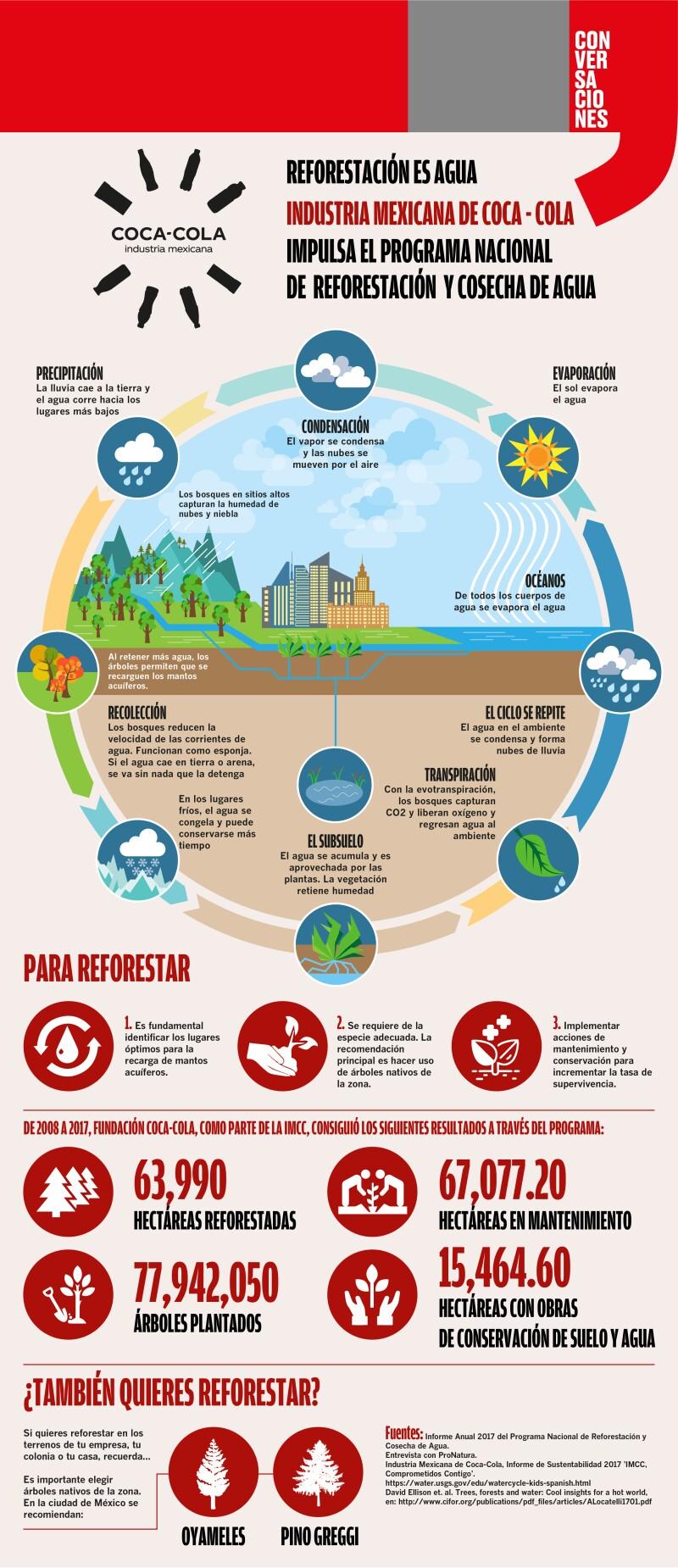 Reforestación es agua