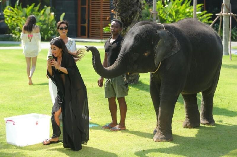 Ahora que el clan Kardashian-Jenner se encuentra vacacionando en Tailandia, la hermana más famosa decidió tomarse una foto con un elefante, con lo que no contaba era que a él no le encantaría la idea.