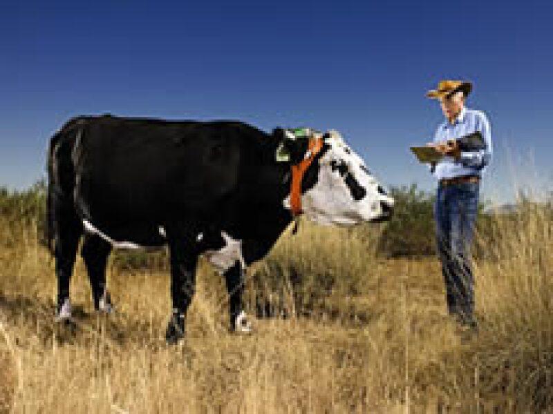 El GPS podría ser la solución al pastoreo. (Foto: CNNMoney)