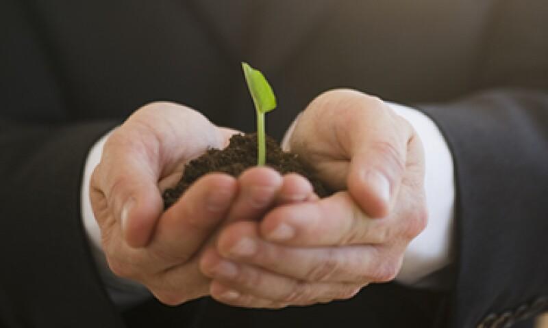 Crecer un negocio con recursos propios y no recurrir a fondos hasta que sea rentable, es una forma de emprender empresas tenológicos que se ha olvidado. (Foto: Getty Images)