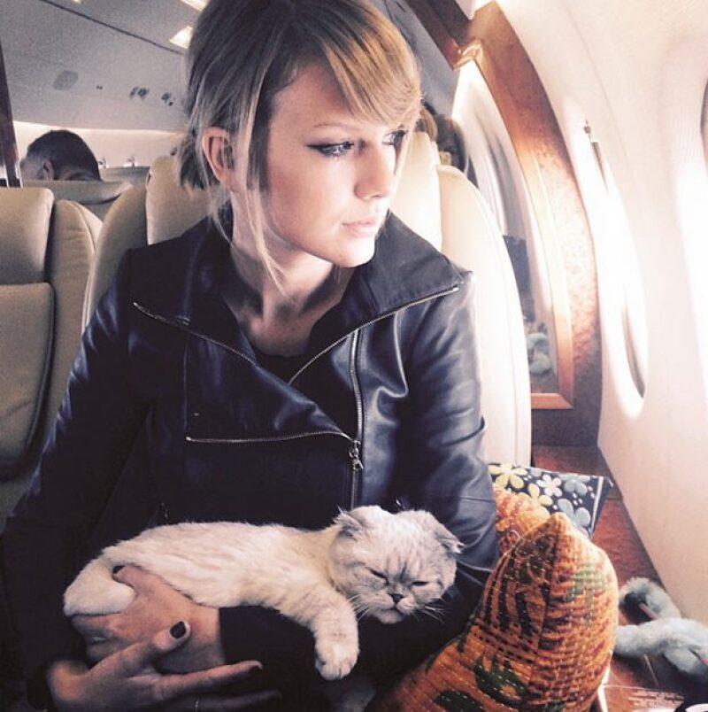 Meredith y Olivia son las fieles acompañantes de Taylor.