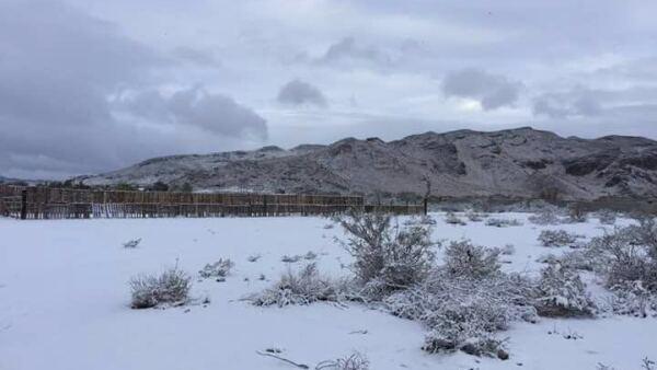Zona nevada