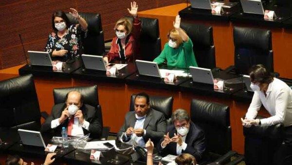 Ley-de-Amnistia-Senado.jpeg