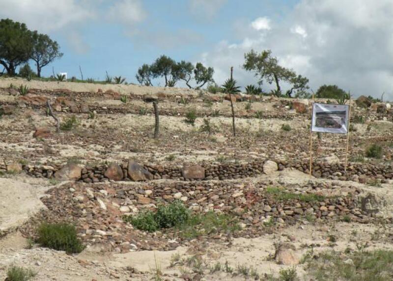 Suelo erosionado de Tlaxcala