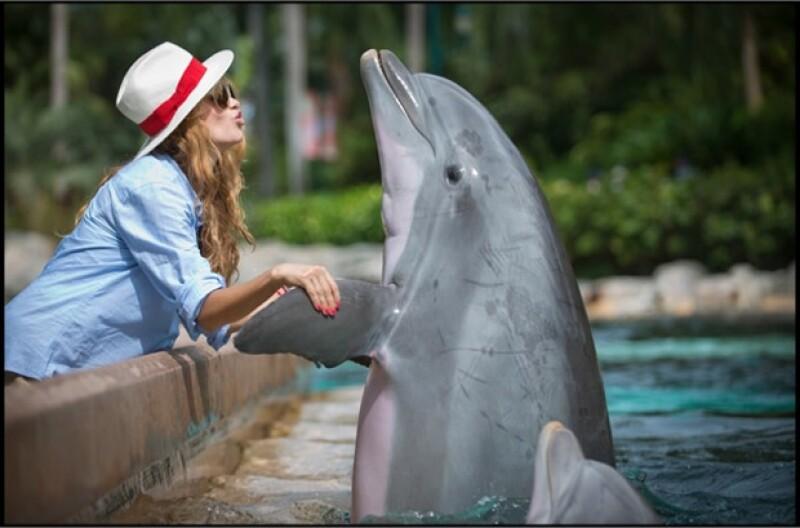 La cantante mexicana convivió el fin de semana con delfines en el parque acuático y su foto agradó mucho en Facebook.