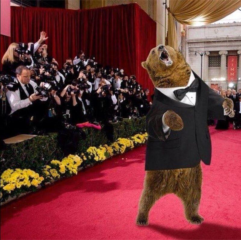 El oso de The Revenant ya llegó a la alfombra roja de la premiación.