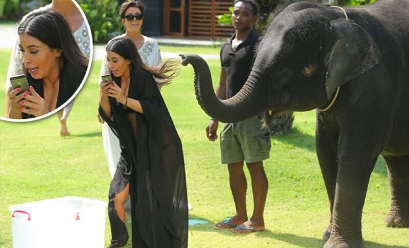 La futura esposa de Kanye hizo un gesto muy gracioso cuando el elefante levantó su trompa.