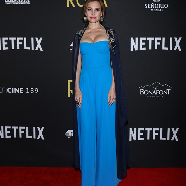Netflix ROMA Premiere In Mexico City