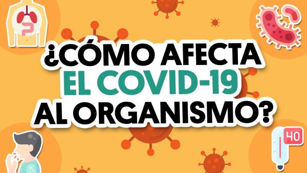 ¿Cómo ataca el #CoViD19 al organismo? | #QueAlguienMeExplique