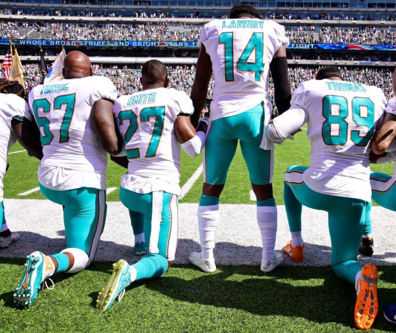 Dolphins protestas