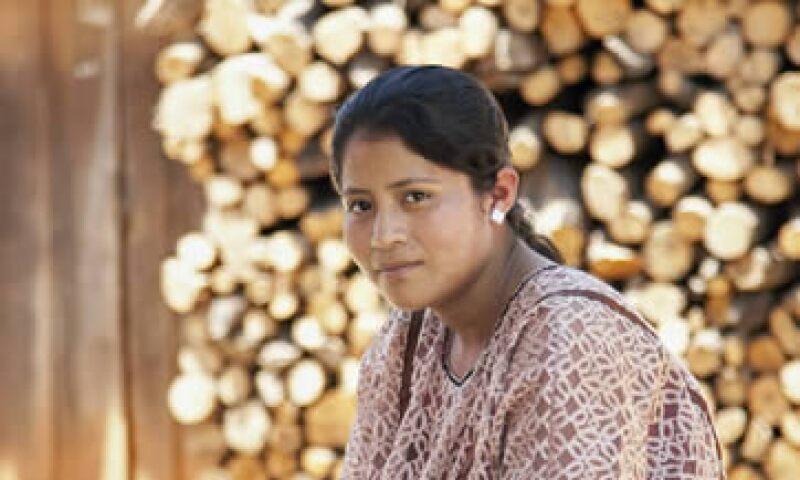 El proyecto involucró a niños de comunidades indígenas mazahuas, nahuas y amuzgos. (Foto: Aintza)
