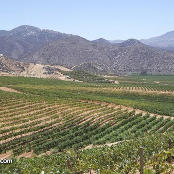 Aspecto: Valle de Guadalupe