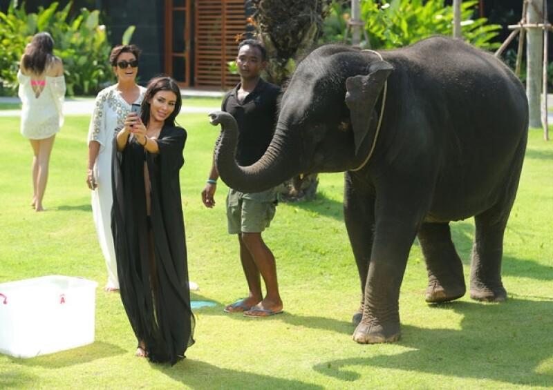 """Kim tomándose un """"selfie"""" con el elefante."""