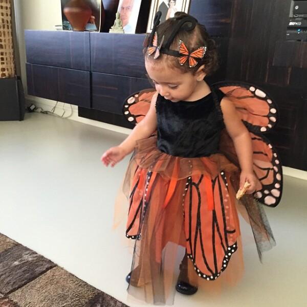 Mini Jackie no se quedó atrás, pues la ex Miss Universo la vistió con un disfraz de mariposa con colores alusivos a Halloween.