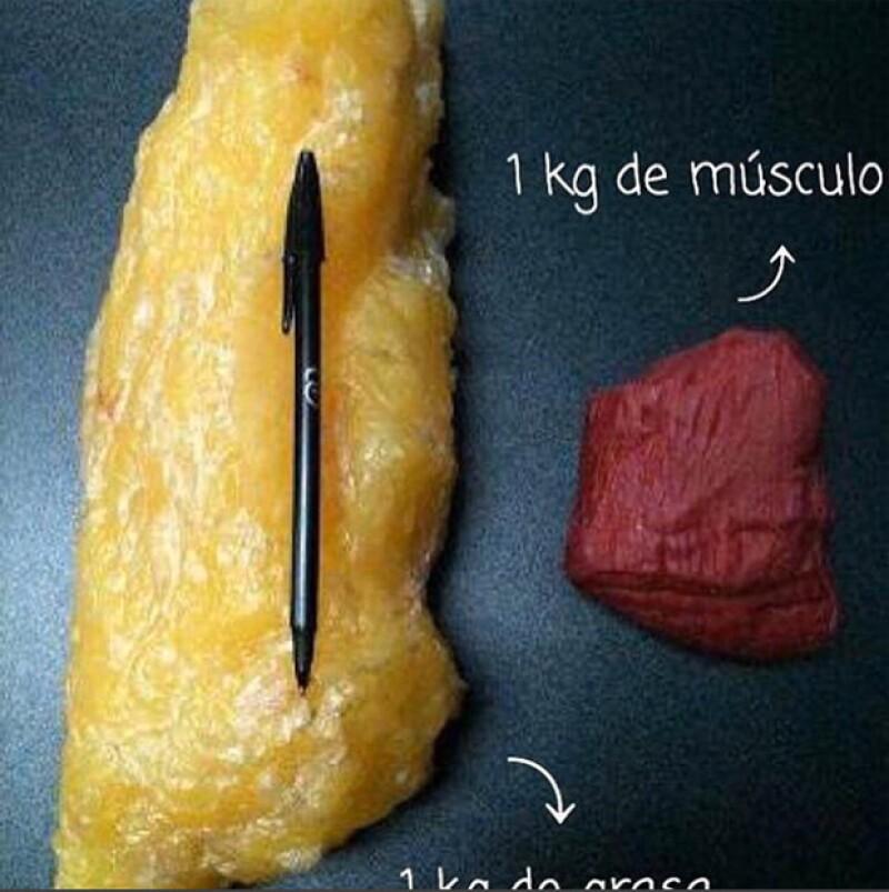 Sandra compartió este comparativo para explicar cómo pierde peso el cuerpo humano.