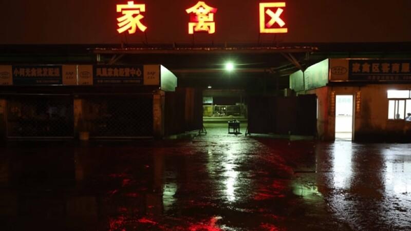 gripe, aviar, china, aves, comercio