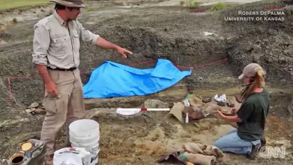 Así son los fósiles del impacto del asteroide que aniquiló a los dinosaurios