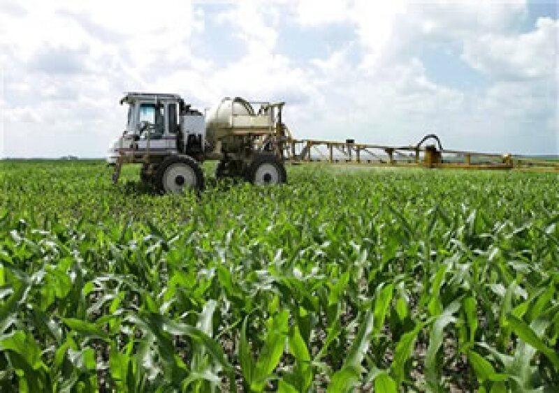 El cambio climático afectará a los productos agrícolas en todo el mundo, concluyó APEC. (Foto: AP)
