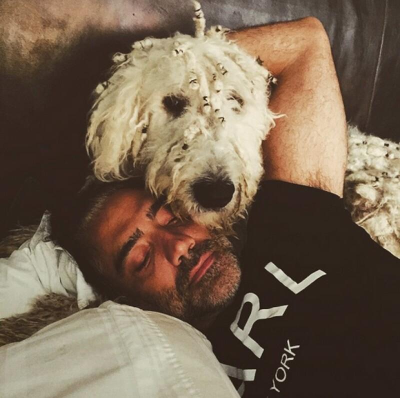 En repetidas ocasiones, Alejandro había mostrado lo bien que se lleva con su perro Kush.