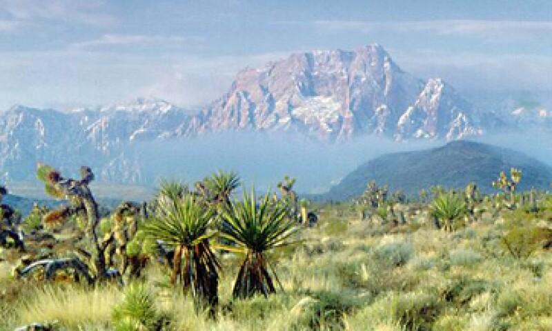 Con su planta en el desierto, BYD busca crecer en el mercado estadounidense.  (Foto tomada de las vegas.es)