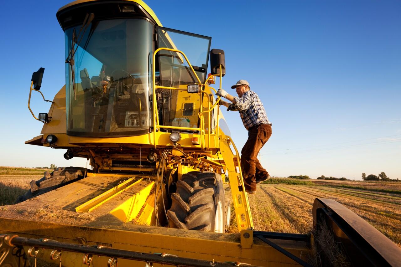 México pretende reducir su dependencia del maíz proveniente de EU