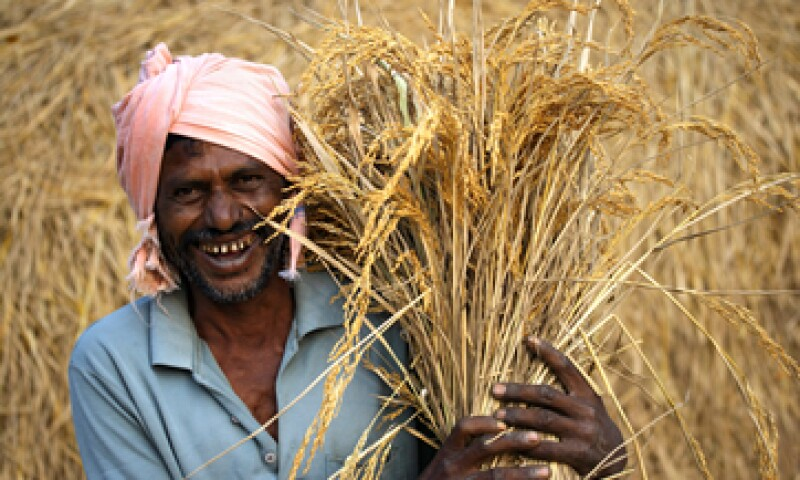 El Banco Mundial advierte que para 2050 la producción agrícola tendrá que incrementarse en un 70%. (Foto: Getty Images)
