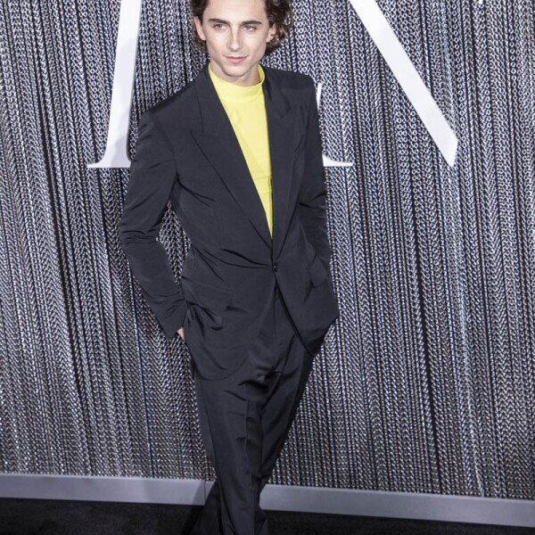 """Timothée Chalamet attends the New York premiere of """"The"""