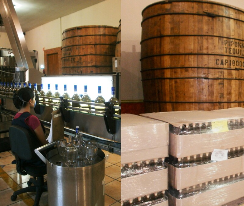 La Compa��a Tequilera de Arandas fabrica esta bebida desde hace 16 a�os
