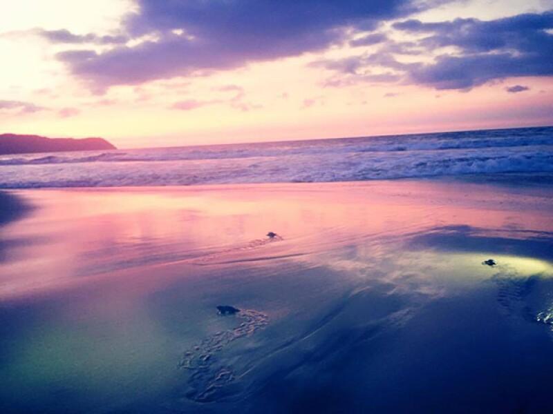 La actriz compartión esta bella imagen de su expriencia en al mar.