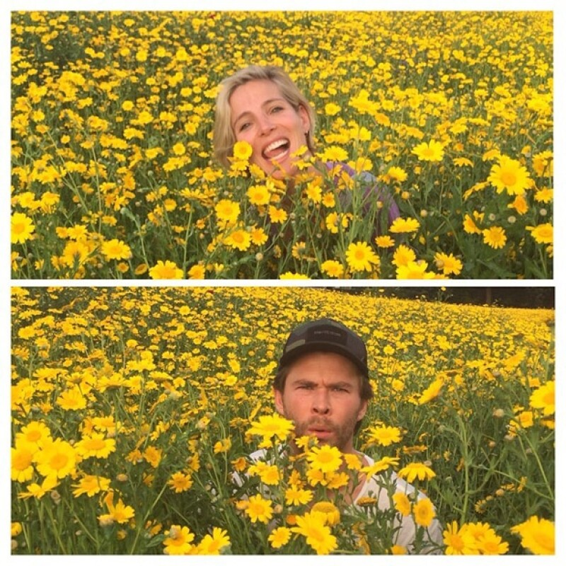 La pareja se tomó fotos en una espectacular pradera repleta de flores amarillas.