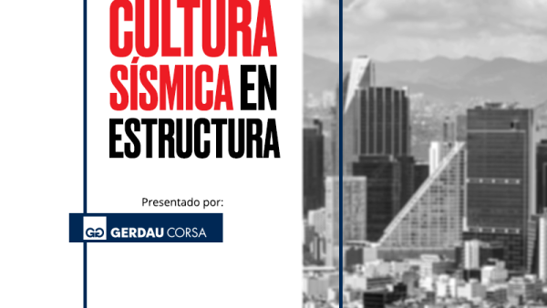 Cultura sísmica en estructura / media principal