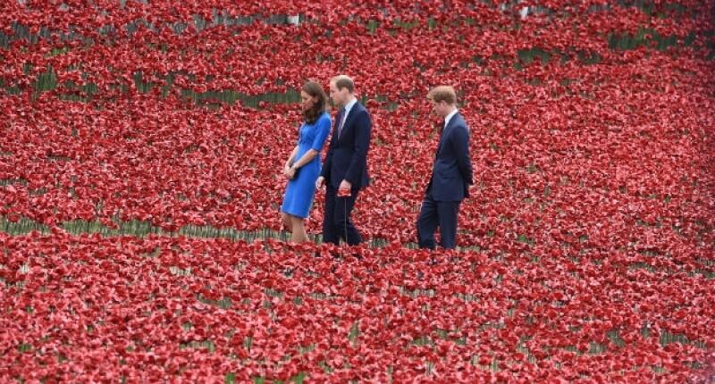 El rojo predomina a la vista en el campo de amapolas instalado en la Torre de Londres.