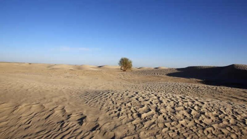 Resultado de imagen de el desierto del Sahara. Nigeria se caracteriza por la existencia de