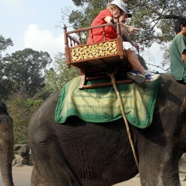 Camboya - Angkor - elefantes