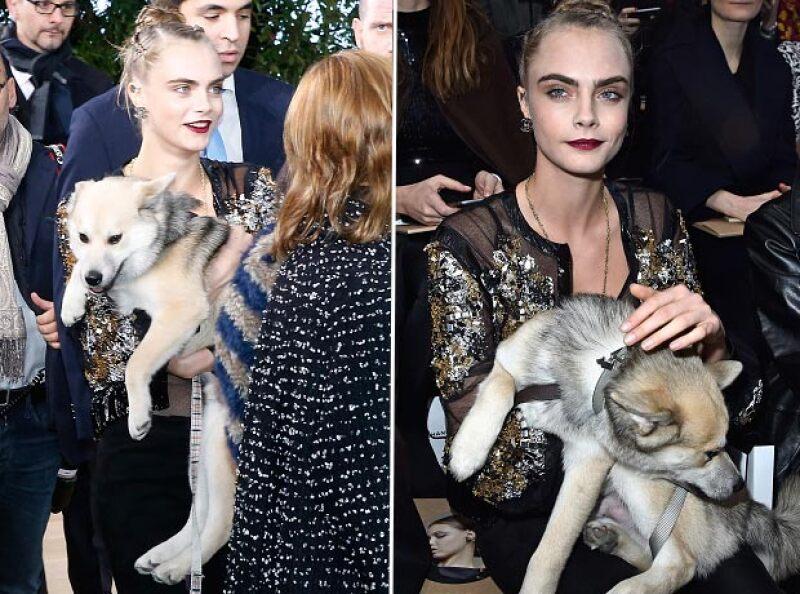 Al parecer, Leo ha venido a sanar la herida que dejó la muerte de Mouse, el anterior perrito de la modelo.