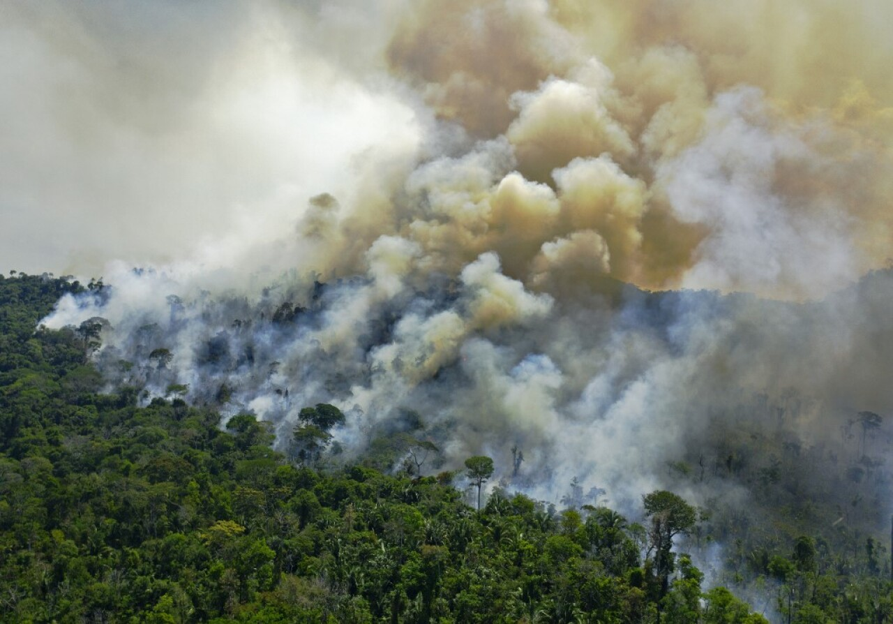 Los incendios en la Amazonía y el Pantanal se disparan en septiembre