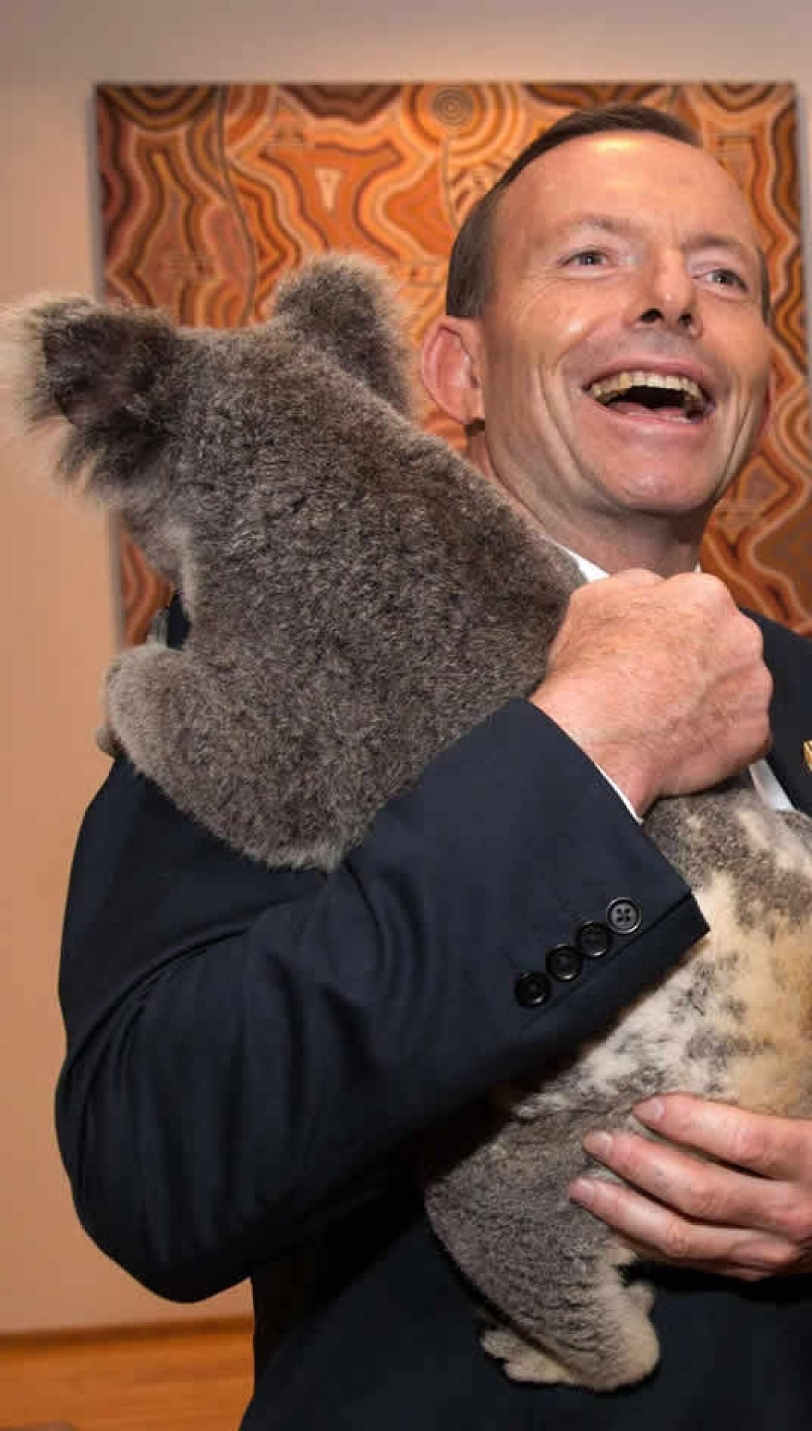 Australia, primer ministro, koala, G20
