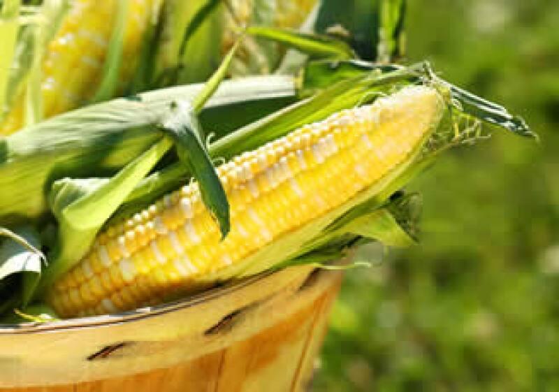México importa cerca del 30% del maíz que consume. (Foto: Photos to go)