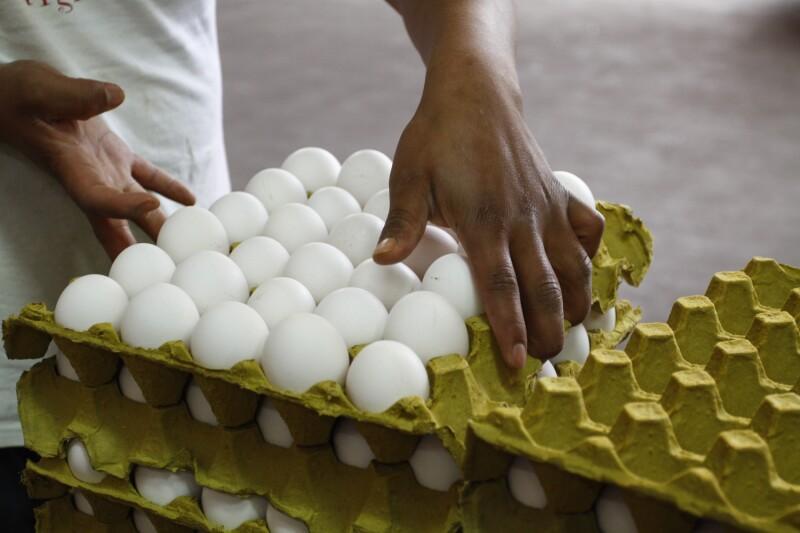 El precio del alimento ha caído más de 20% en los 12 meses hasta abril.