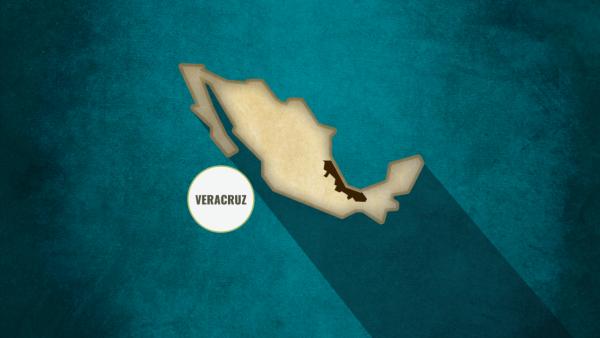 Veracruz diputada Azucena Rodríguez