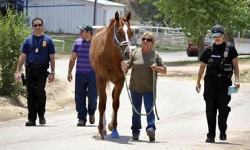 El cártel de los Zetas fue acusado de lavar dinero a través de carreras y crianza de caballos. (Foto: AP)