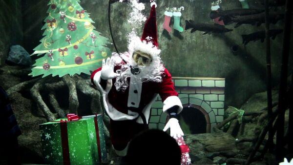 Este Santa Claus cambia por agua las alturas